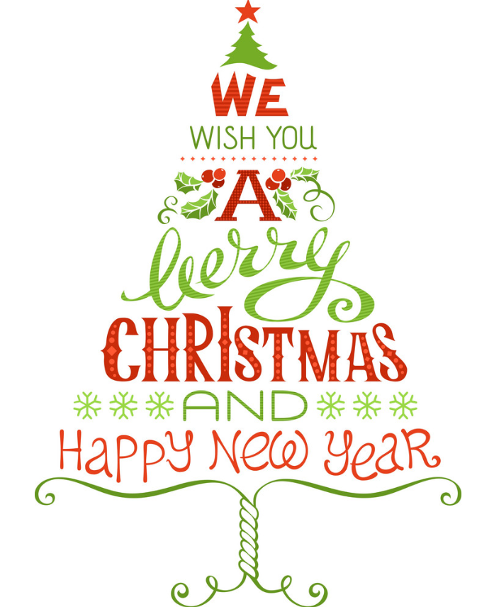 We wish you a Merry Christmas and a Happy New Year | Oncotherm